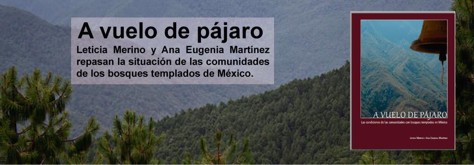 Banner-A-vuelo-de-Pajaro2