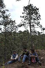 Silvicultores en Atepec, Oaxaca.