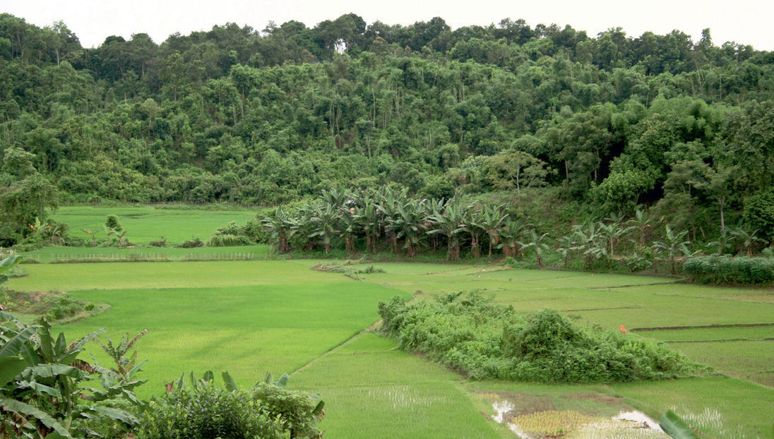 paisajes complejos-agrícolas forestales-cambio climatico