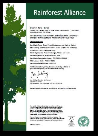 certificado noh bec