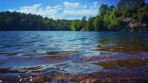 importancia del manejo forestal comunitario para garantizar el agua-pago por servicios ambientales mexico