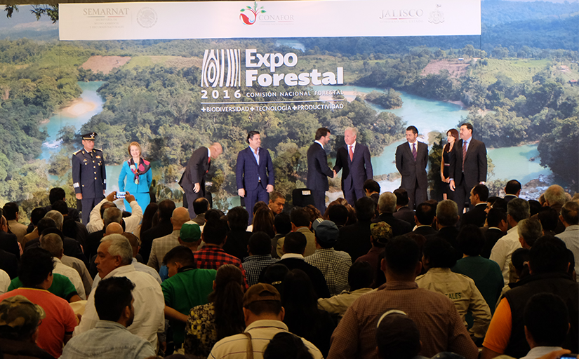 expoforestal_inaugu