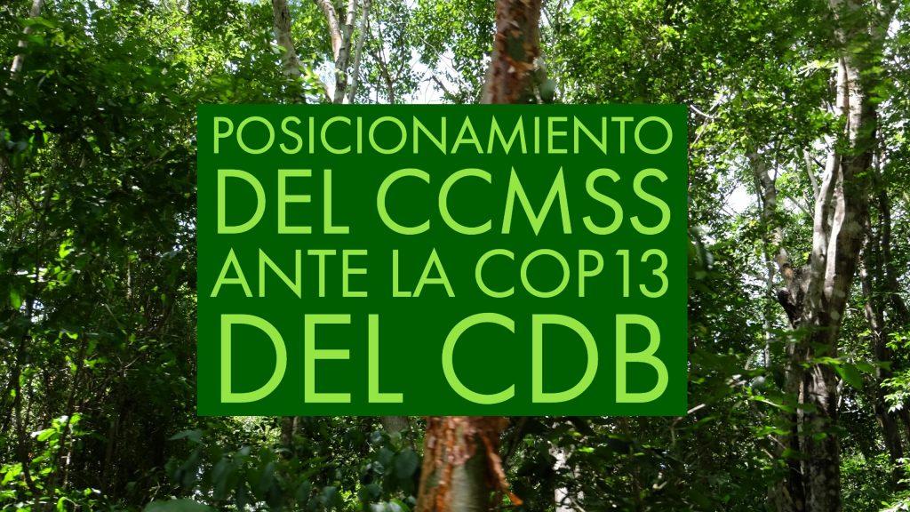 posiconamiento_ccmss_cop13_cdb