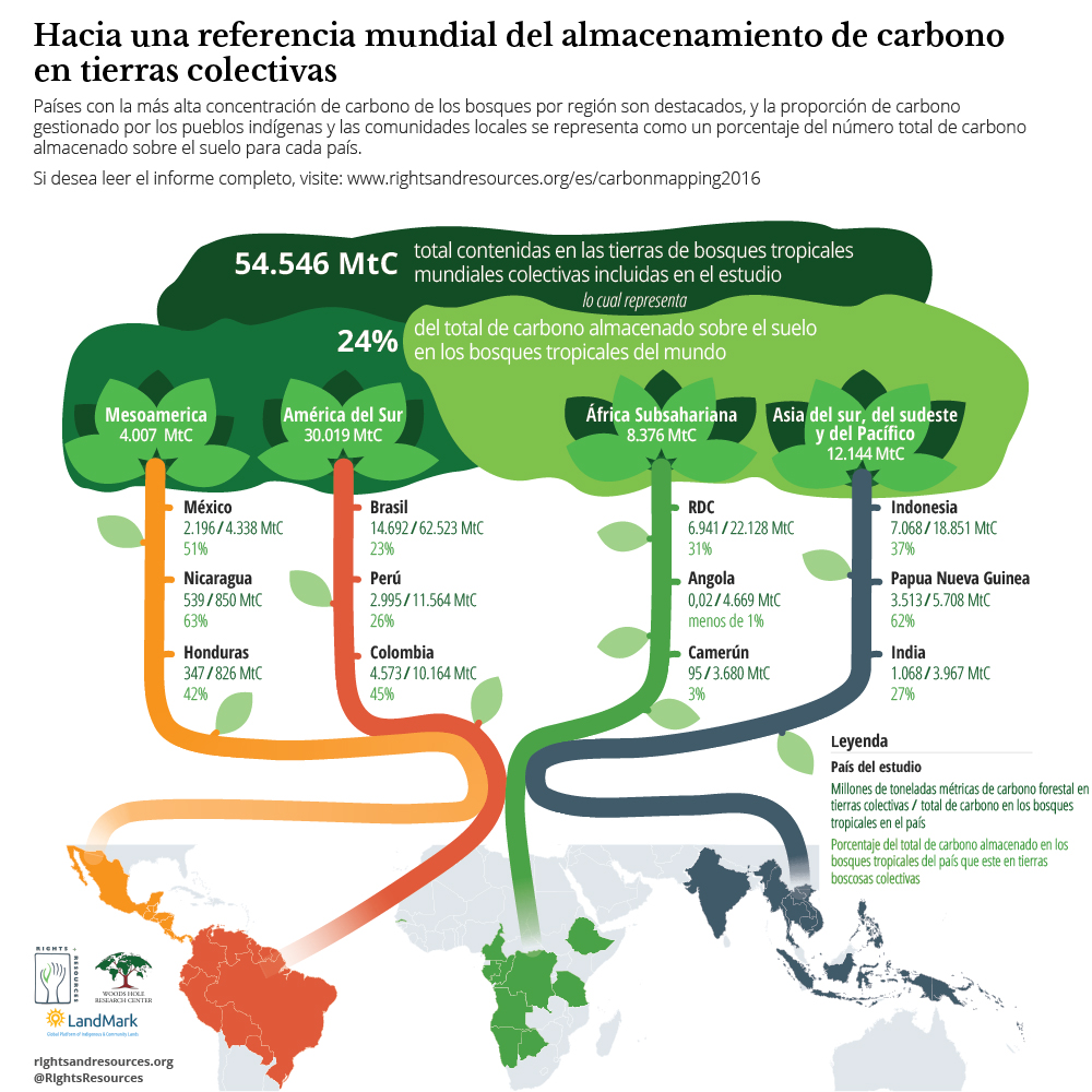 Fuente: Rights and Resources Institute