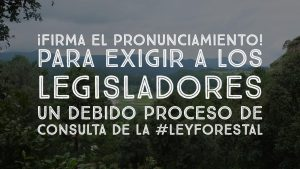 firma_pronunciamiento_leyforestal