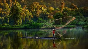 Experiencias de comunidades locales del mundo trabajando para salvaguardar la biodiversidad-ccmss