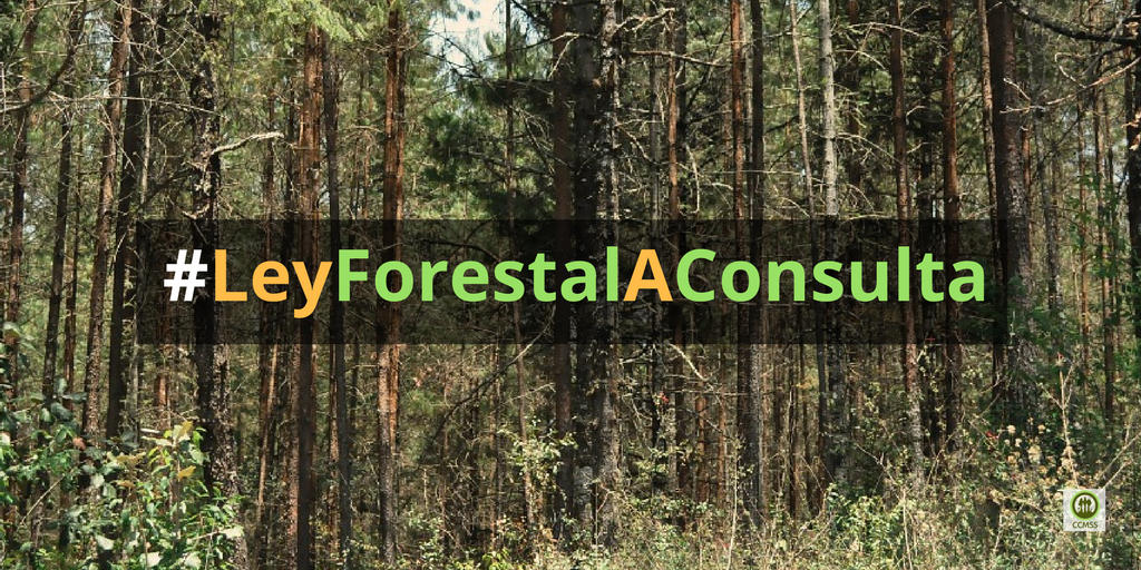 dictamen de Ley Forestal en Senado-Medico bosques