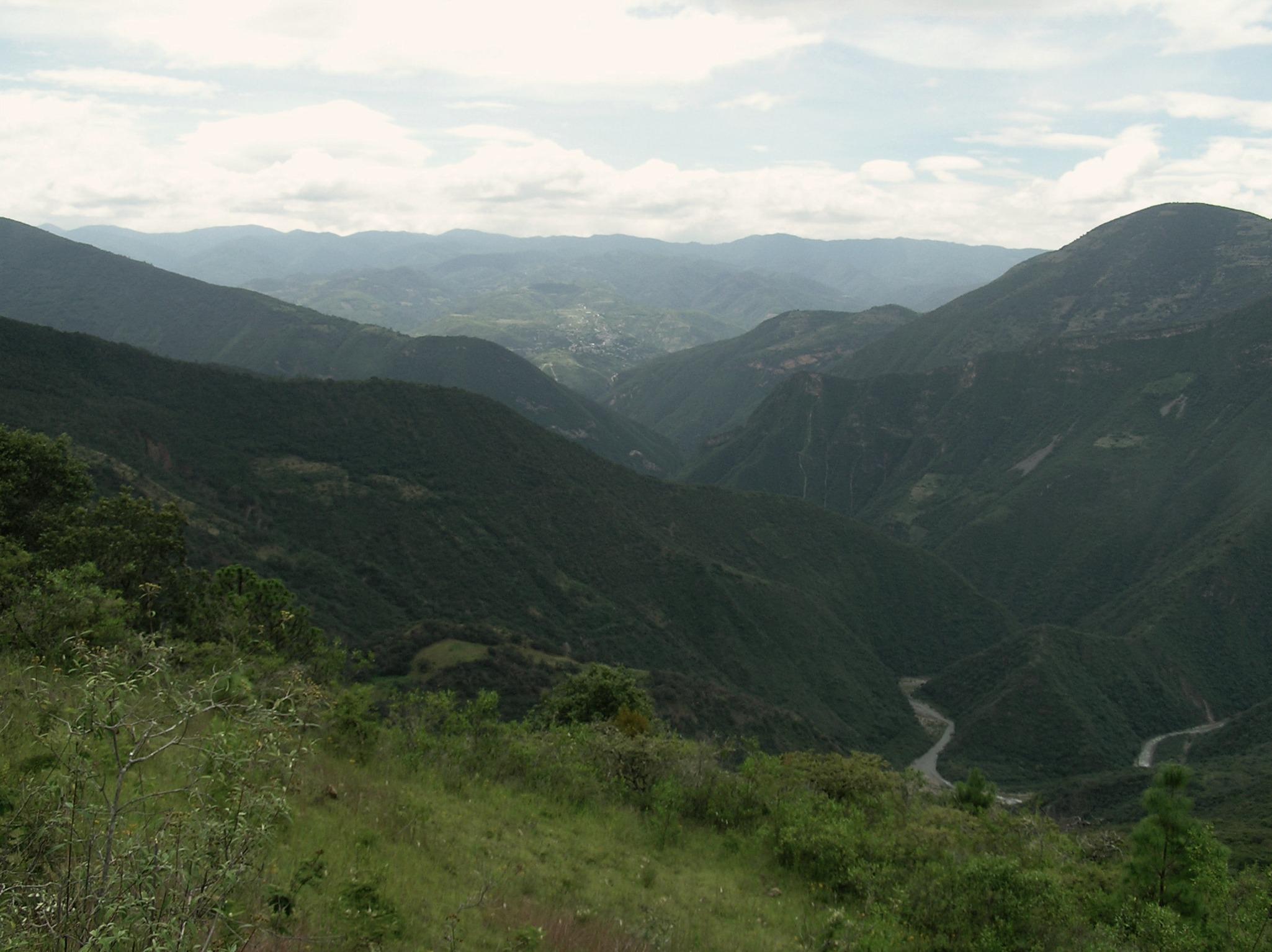 Analco-manejo forestal comunitario-mexico-productos fortestales certificados