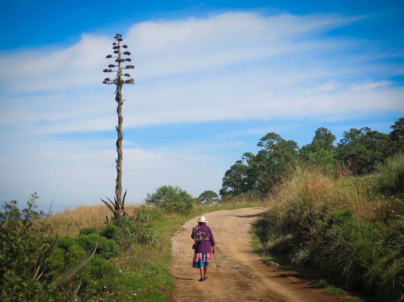 ©Archivo CCMSS-Mujer Otomi-Amanalco-fortalecer a comunidades forestales-roteger el clima y el ambiente