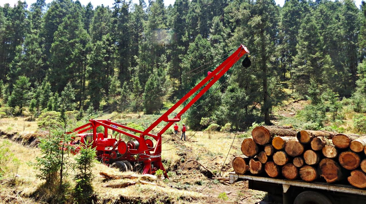amanalco maderacertificada ejidosy comunidades