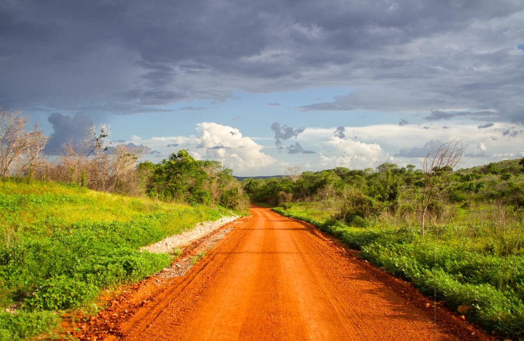 aun-hay-oportunidad-para-aprobar-una-mejor-ley-forestal-mexico-bosques-comunidades