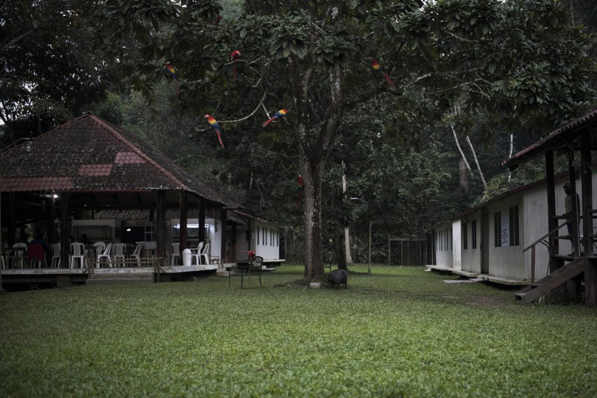 proyectos-ecoturismo-bosques-comunidades