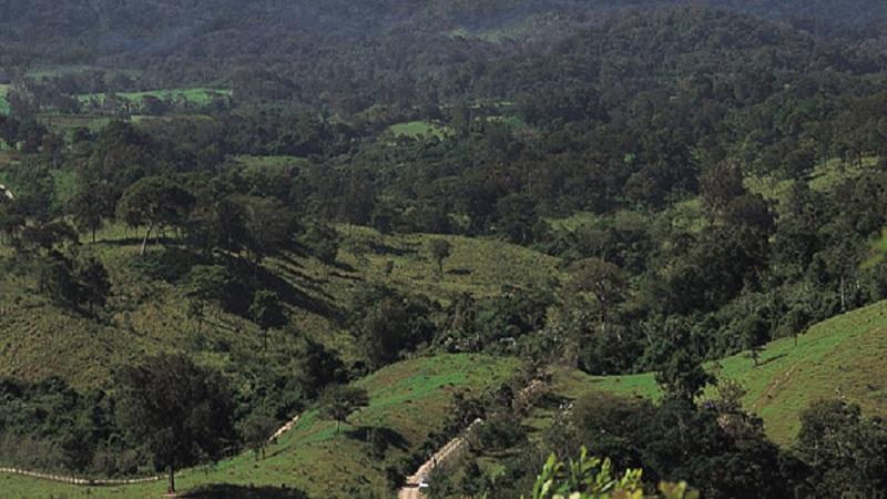 chimalapas-comunidad-defensa-territorio-mineria