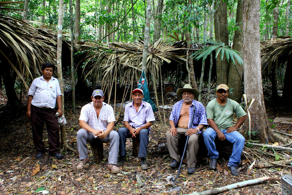 manejo-forestal-comunitario-bosques-tropicales