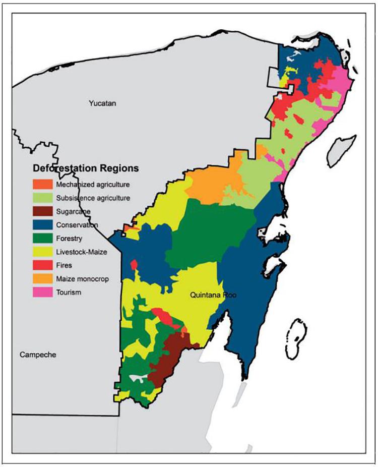 deforestacion-yucatan-manejo-forestal-comunitario