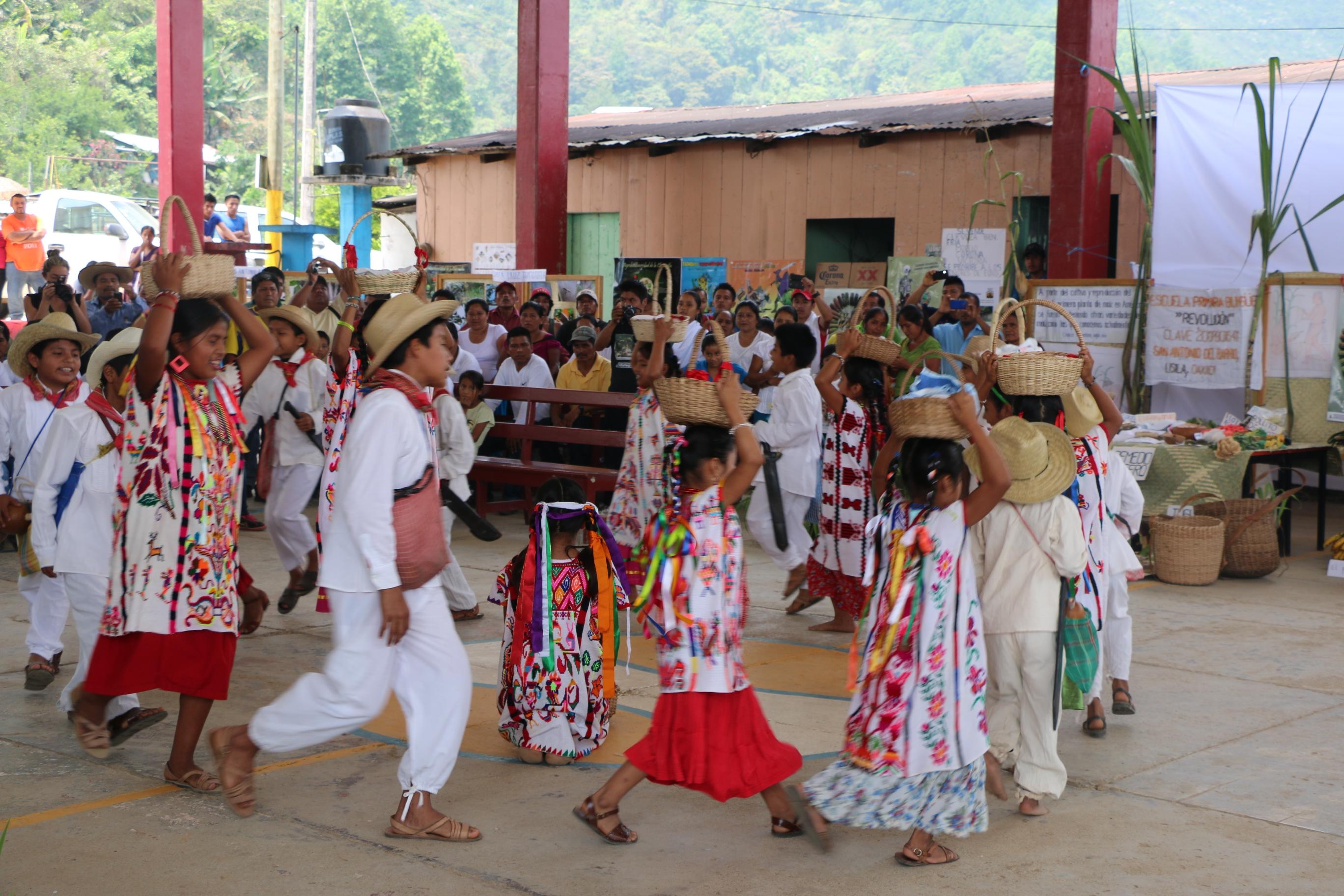 El manejo forestal comunitario integra criterios de la conservación de la biodiversidad. La Feria de la diversidad biológica y cultural de Chinantla se realiza cada año en la región de Santa Cruz de la Chinantla, para celebrar su riqueza biológica.