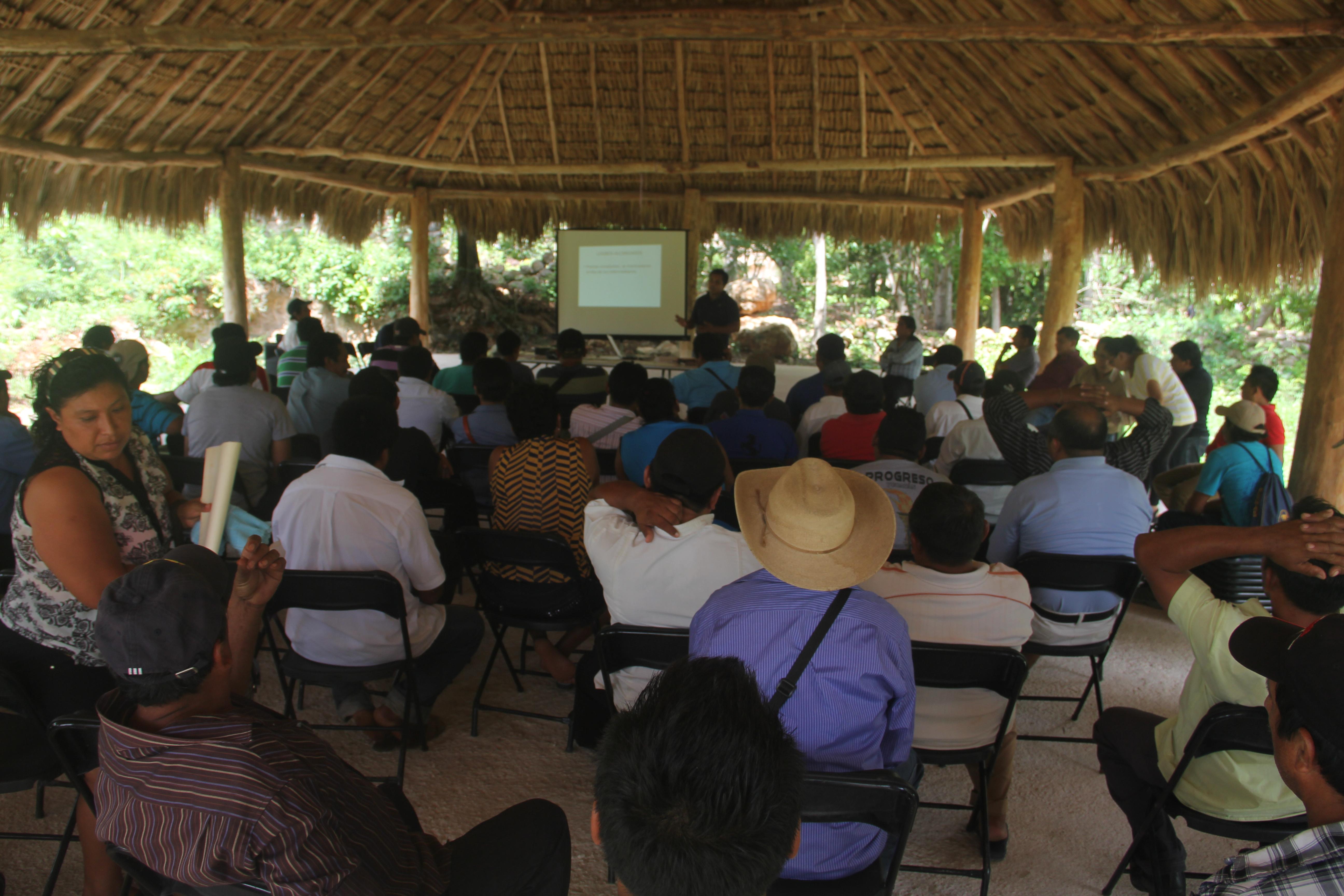 Gobernanza en territorios forestales - Más de 15 mil entidades agrarias cuentan en México con más de 200 hectáreas de bosques, selvas o matorrales. Muchas de estas comunidades deciden de manera colectiva cómo utilizar sus recursos forestales.