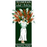 tosepan-unidos-logo
